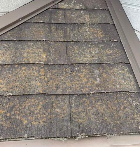 普段見えない屋根の状態は??